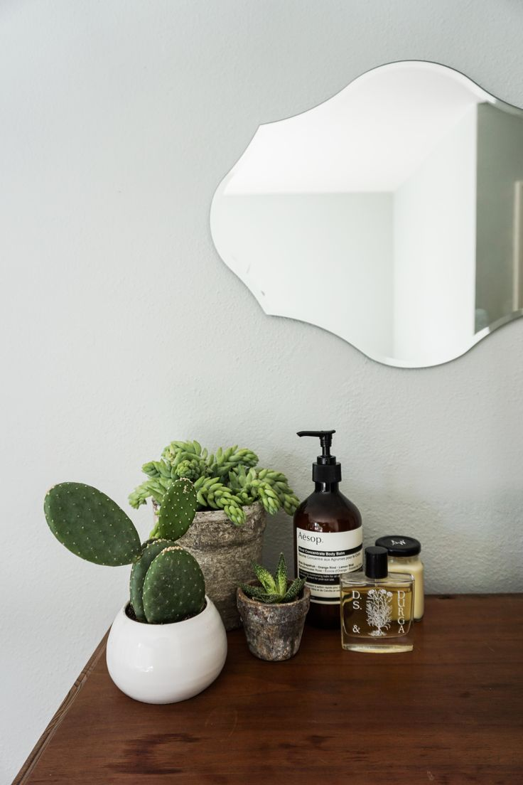 Succulents are a great way to bring life into your home, even if you have a black thumb. #homeisintheair