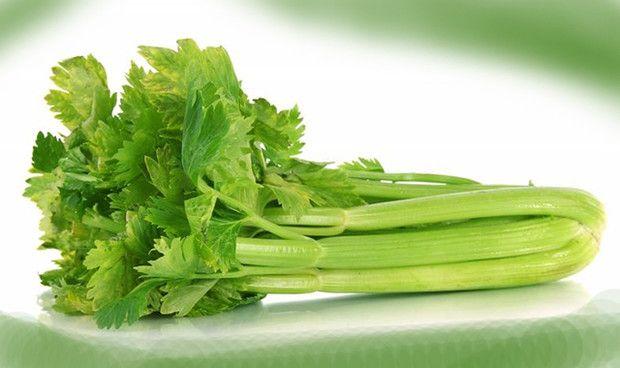 Egész évben hozzájutsz a zellerhez, mely az egyik legnagyobb tápértékkel rendelkező zöldség, gyakori fogyasztásával számos krónikus betegséget elkerülhetsz, illetve orvosolhatsz.