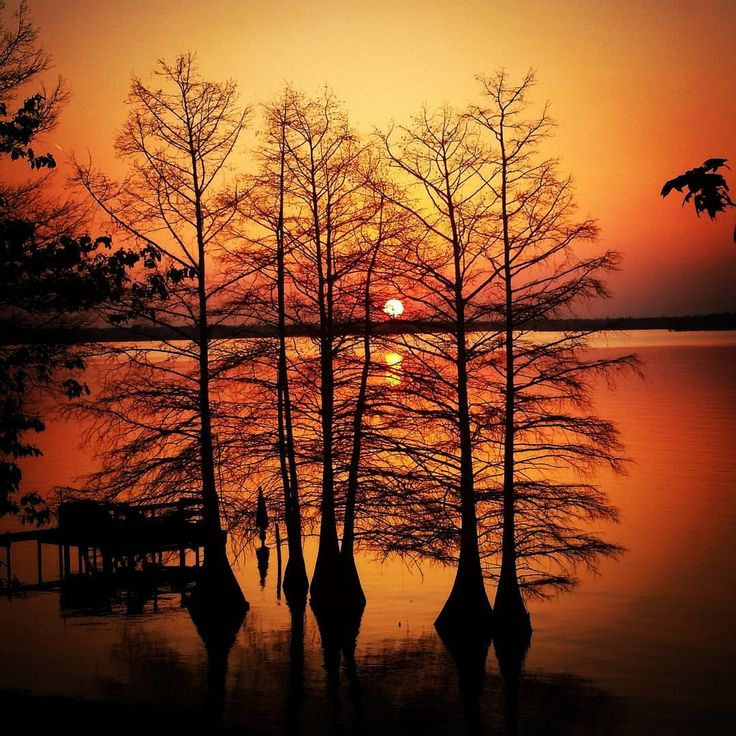 12 best nature photography images on pinterest mississippi mac 5 local nature photography spots near vicksburg quick tips for beginning photographers and safety junglespirit Image collections