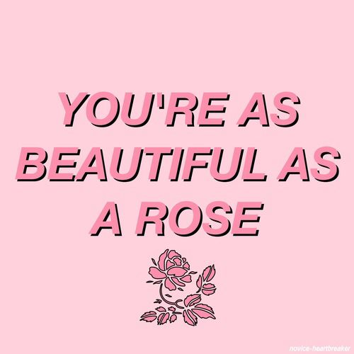 You're As Beautiful As A Rose. @michaelsusanno