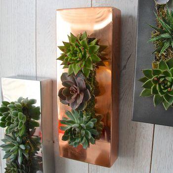 Glanzend koperen hangende plantenbak   Originele plantenbakken