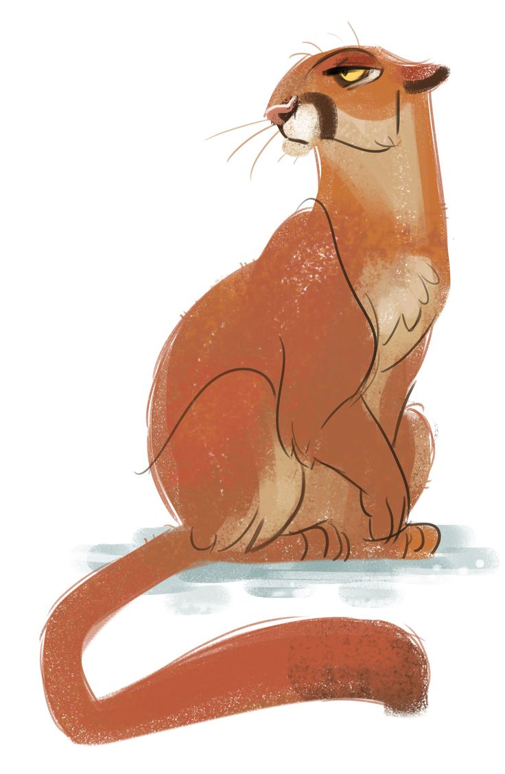Daily Cat Drawings : Photo