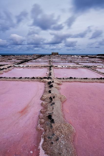 La salina de Los Charcos, situada en la costa de Guatiza, (Lanzarote) Antaño, las salinas fueron toda una tradición en Lanzarote. Presentes desde el siglo pasado se encuentran en distintos puntos de la geografía, siendo su producción indispensable para la conservación del pescado, ya que antiguamente no se utilizaba el hielo.