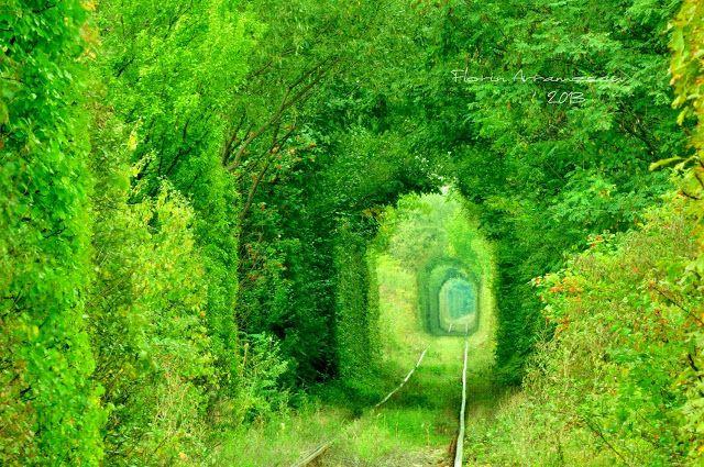 FlorinAvramescu...prin ochiul de sticla!: Tunelul , mai explicit !