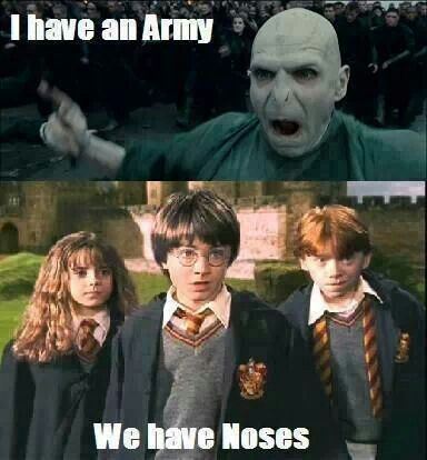 "harry potter ""i have an army,we have noses""joke - Google Search"