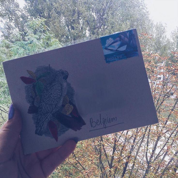 Zainspirowana drzewami na zewnątrz postanowiłam pokolorować liście na kopercie. Tylko czy w krajach gdzie żyją papugi liście drzew zmieniają kolory?  #penpalspoland #snailmail #snailmailer #snailmailideas #letter #letters #lettersarebetter #stamp #poststamp #envelope #parrot #papuga #koperta #list #listy #ludzielistypiszą #poczta #pocztapolska #kolorowanka