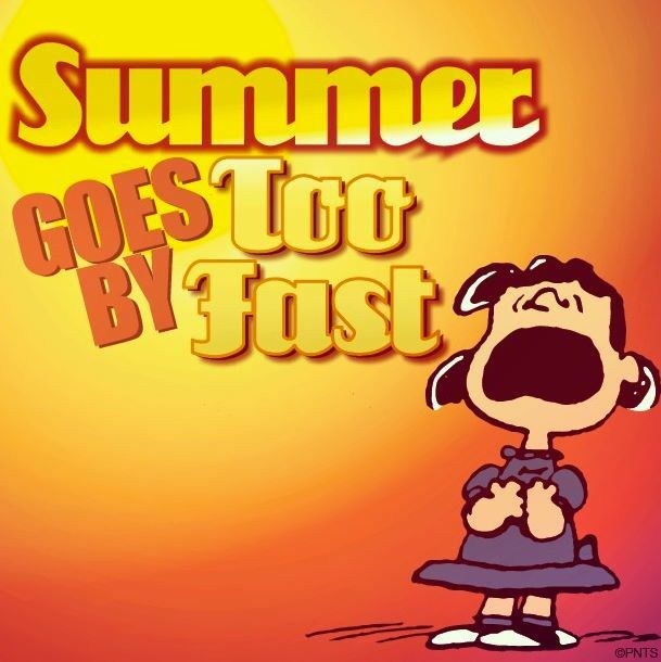 Image result for summer is almost over images