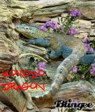 Blingee Dragons | Dragón de Komodo
