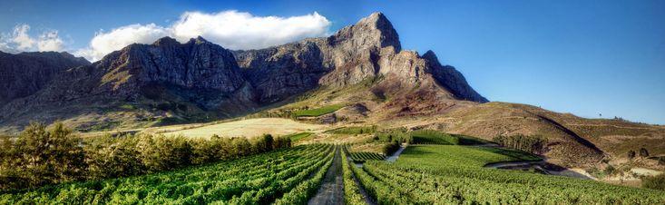 LOrmarins   Farms   Anthonij Rupert Wines