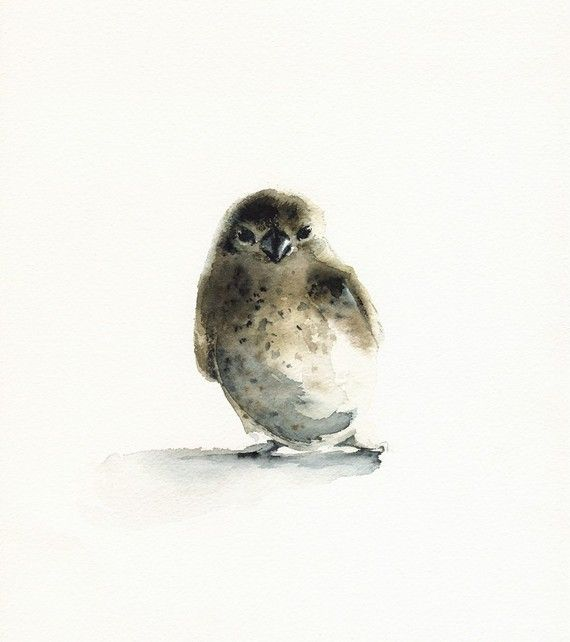 I am suddenly loving watercolor paintings. Love this sweet little bird.