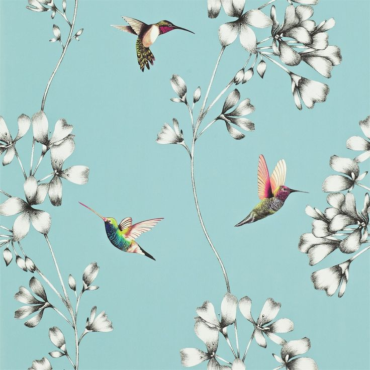 Products | Harlequin - Designer Fabrics and Wallpapers | Amazilia (HAMA111060) | Amazilia Wallpapers