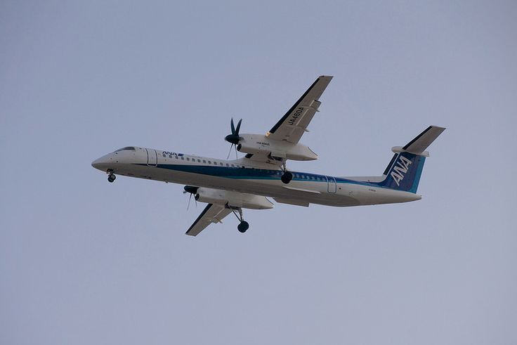 ANA WINGS DHC-8-Q400 JA460A landing on Osaka International Airport(ITM) All Nippon Airways