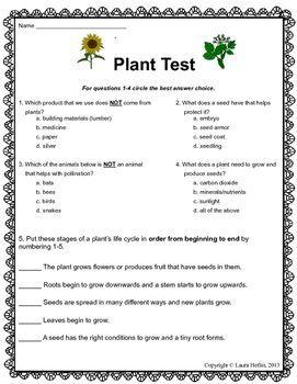 plant testassessment 3rd 4th 5th science worksheets