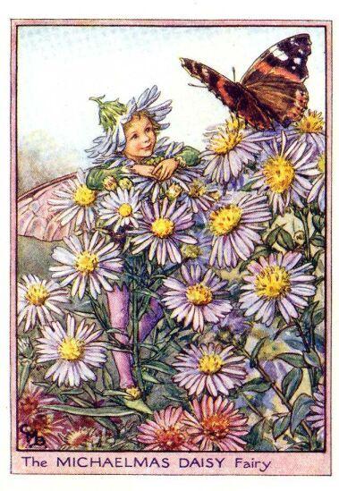 The Michaelmas daisy fairy by Cicely Mary Barker