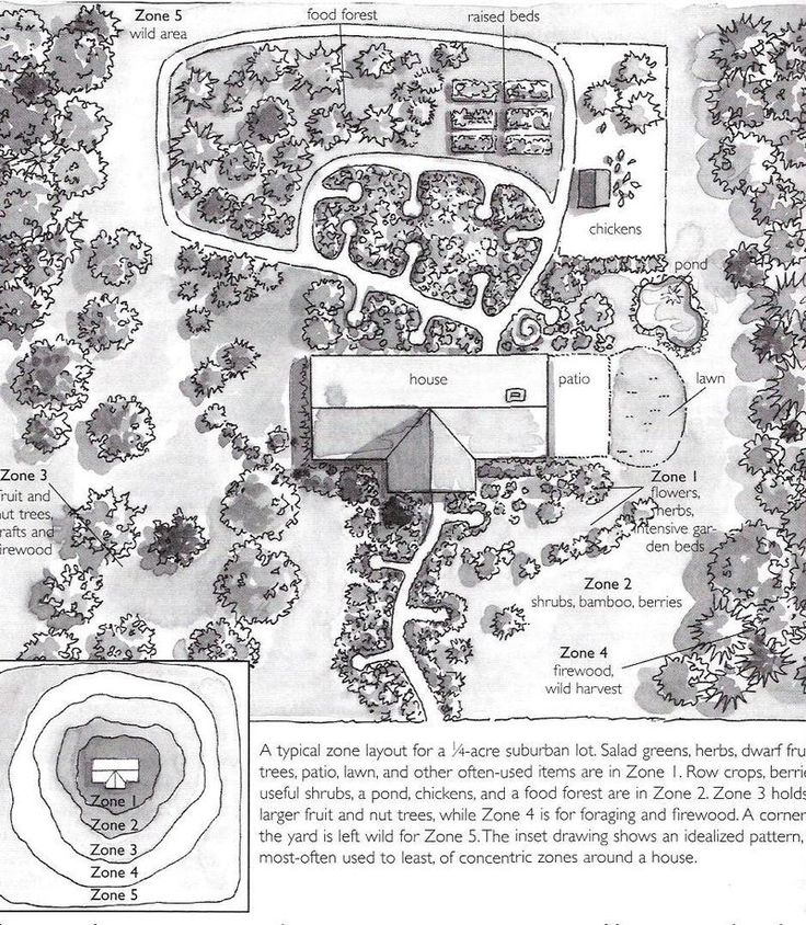 Permaculture on 1/4 acre with 5 Zones around house