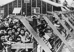 Storia dimenticata: i campi di concentramento USA nella 2 guerra mondiale   Informare per Resistere