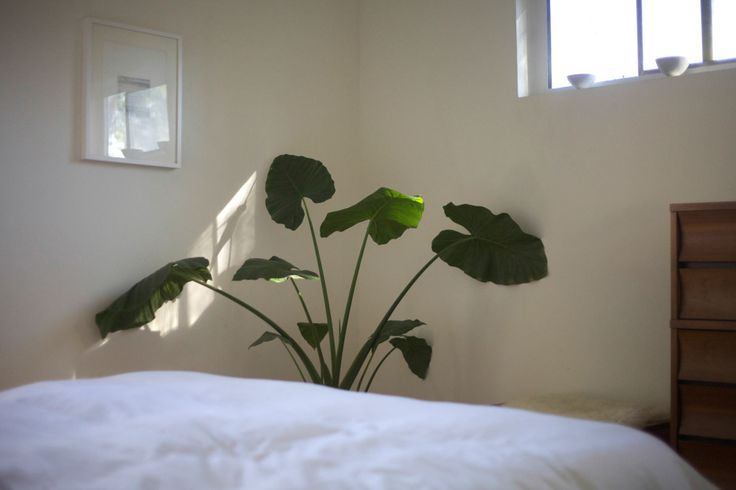 small spaces: Photo