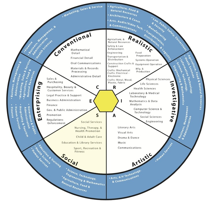 Job Type Wheel where do your interests fit? Career