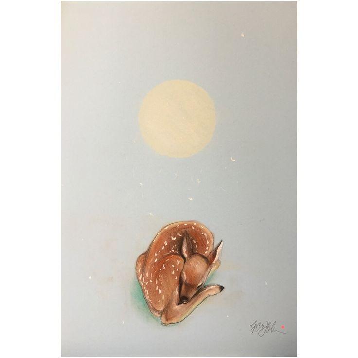 "Drawing ""FAWN"" 46 x 32 cm ©"