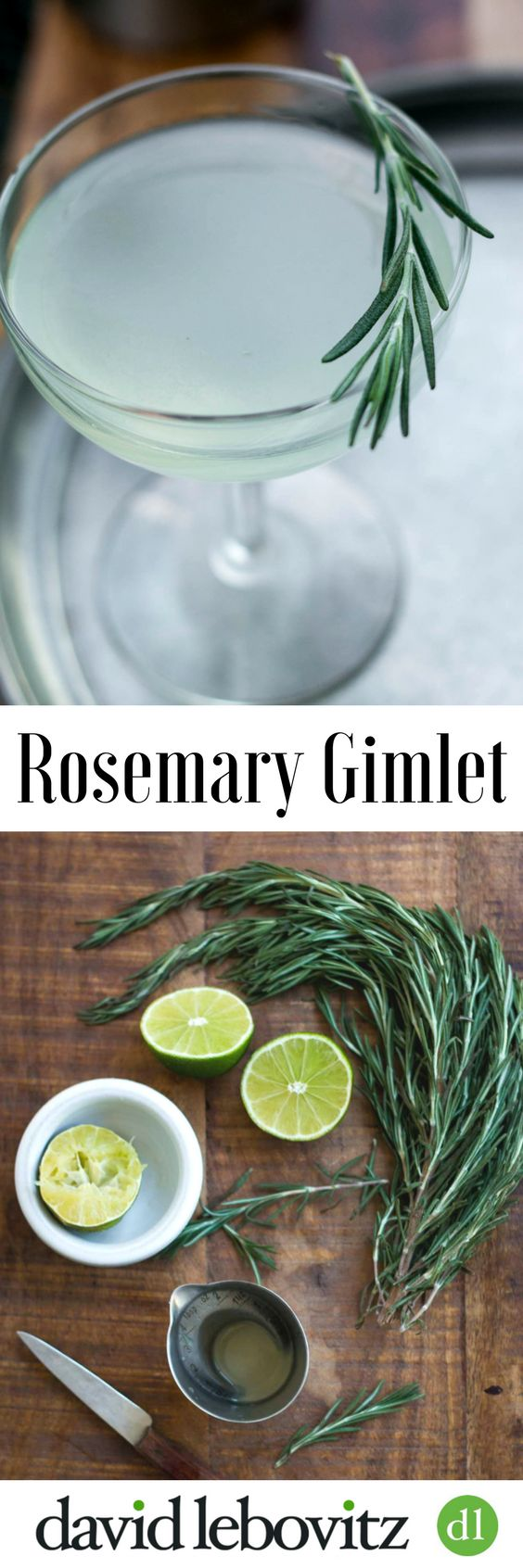 Rosemary Gimlet Cocktail; A delicious twist on the classic!