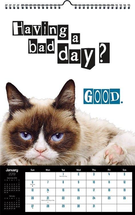 Grumpy Cat Calendar 2019 January Grumpy Cat Poster Calendar #dateworksbytrends #dateworks #trends