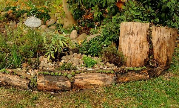 Spinnweb Hauswurz und Co - Seite 1 - Pflanzenfragen - Mein schöner Garten online