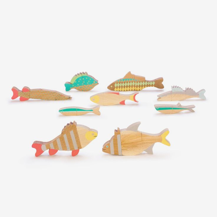 Fishes of Balaton Magnetic Puzzle