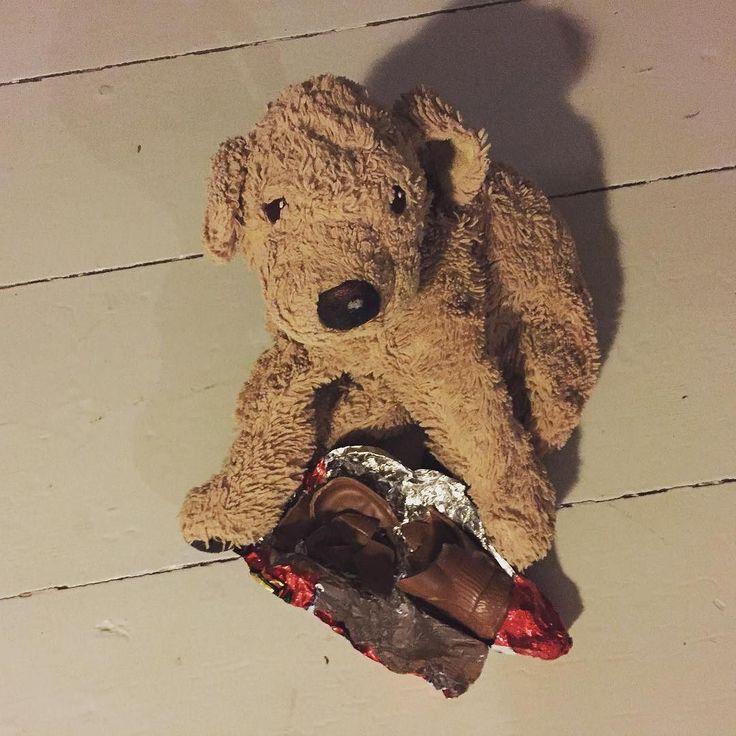 This is what happens if you leave a chocolate  alone with Miss Stanhope... Santa  had no chance. Knock out. Every year the same story... #knockout #santahadnochance #brocken  #lovelaughlobilat #schaumal #look #mess #chocolateaddict #hatesnichtgeschafft #plushiesofinstagram #fluffydog #fluffylife #plushieslife #nevertrustahuman #ffff #nikolaus #schokonikolaus #flauschig #dogsofinstgram #perrosgram #hundeliebe #welpenliebe #puppy