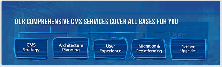 CMS consultants - eDynamic provides end to end Web Content Management System, cms consultant, CMS partners north America, cms partner New York, Toronto, Canada, USA, US CMS Partner .