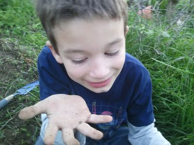 Planting Seeds of Science: Gardening with Kids Blog Hop