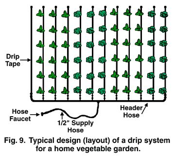efficient use of water in the garden benefits of a drip irrigation system article. beautiful ideas. Home Design Ideas