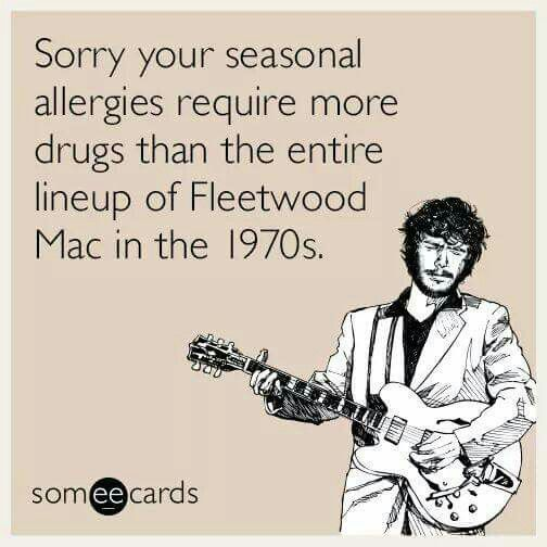 Fleetwood Mac Humor