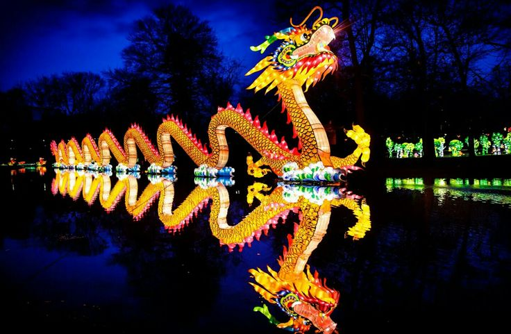 12 best gent images on pinterest ghent belgium castles and chateaus the chinese lantern festival at franklin square in philadelphia a nighttime wonderland of more than 25 fandeluxe Image collections