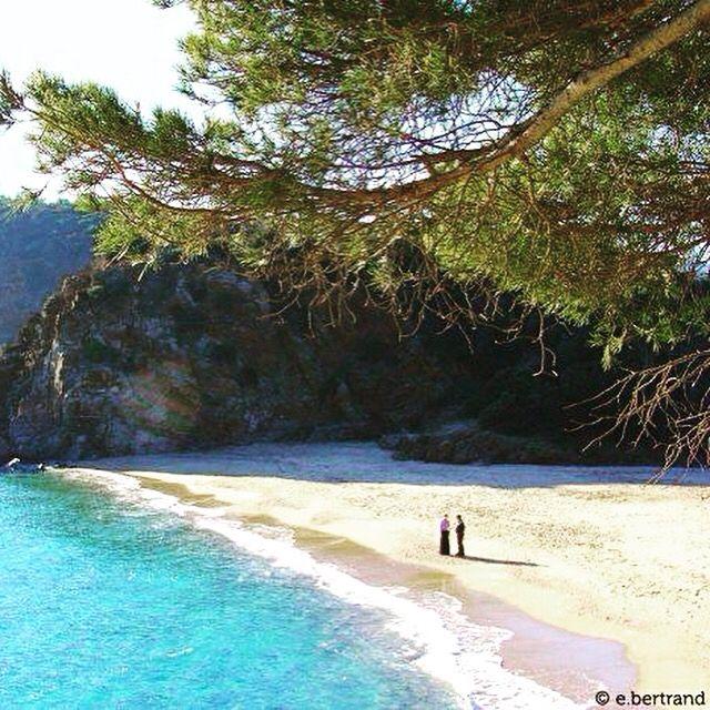 Plage de Bonporteau à #cavalaire #plage #criques #mer #nature