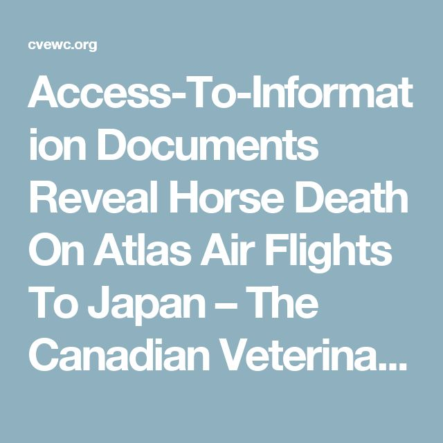 Access-To-Information Documents Reveal Horse Death On Atlas Air Flights To Japan – The Canadian Veterinary Equine Welfare Council