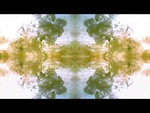 Guided Mindfulness Meditation on the Present Moment [HD] - YouTube