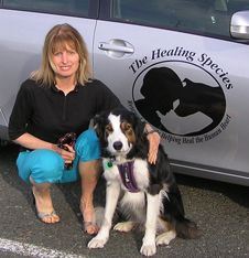 Beau (pictured with Susan) is one of the many graduates from the Nelson ARK's APART course to have accompanied Susan to twelve schools in the Nelson/ Tasman area. Many dogs have gone on to become therapy dogs, accompanying Susan into classrooms and acting as assistant teachers as their individual stories and past experiences are shared with the young people.