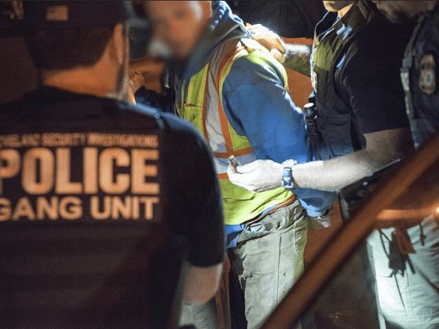 ICE 'Raging Bull' Operation Leads to Arrest of 267 MS-13 Gang Members