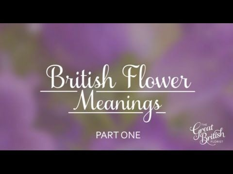 British Flower Meanings Video from The Great British Florist