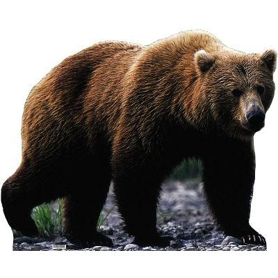"""Grizzly Bear Lifesize Standup Poster -  48"""" x 39"""" - $29.80"""