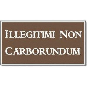 illegitimi non carborundum - Don't let the bastards grind you down.