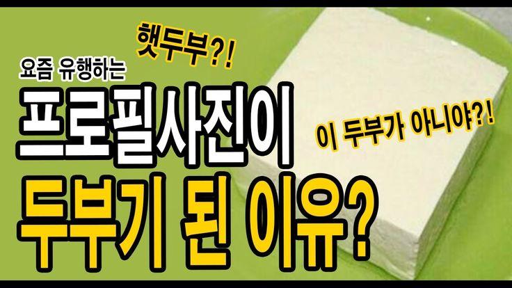 요즘 유행하는 두부가 프사가 된 이유 (Feat. 햇두부?! 그 두부가 아니야 ㅠㅠ 트와이스 퀴즈) _ 메피스터리
