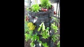 Вертикальное выращивание растений. Видео! - www.fassen.net-Видео сёрфинг