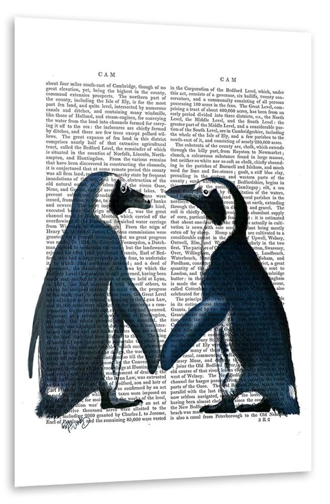 Pinguinliebe Poster