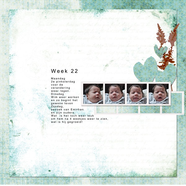weekly art bits week 22 Jopke designs http://winkel.digiscrap.nl/weekly-art-bits-week-22/