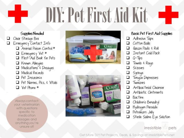 Diy Pet First Aid Kit. Also include buffered aspirin for dogs and jars of squash baby food -- will take care of diarrhea or constipation in dogs and cats