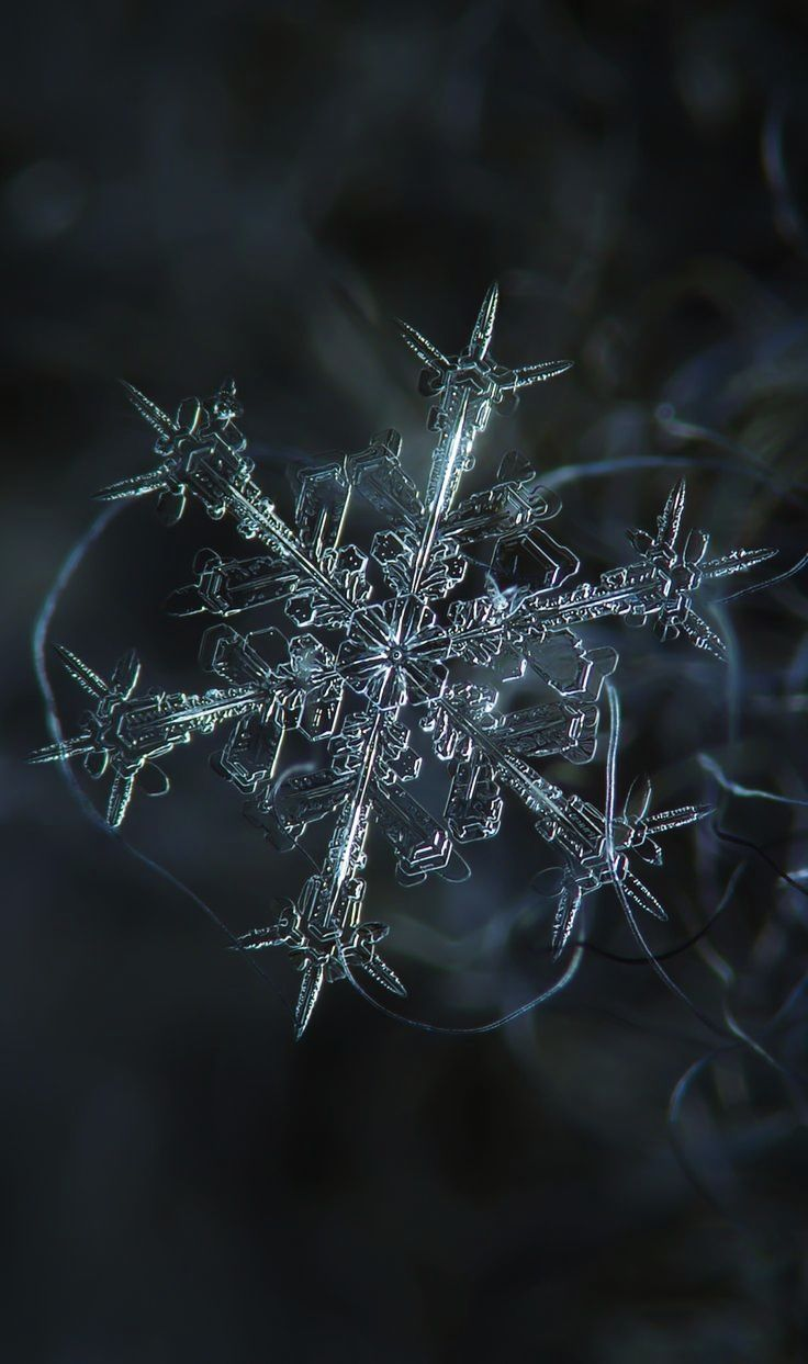 Photograph taken by Alexey Kljatov  Alexey Kljatov, Russian photographer can be a great inspiration to anyone with his custom-built macro add-on for the camera he takes macro shots of snowflakes right outside of his house. He has a series of amazing photos of different snowflakes types.