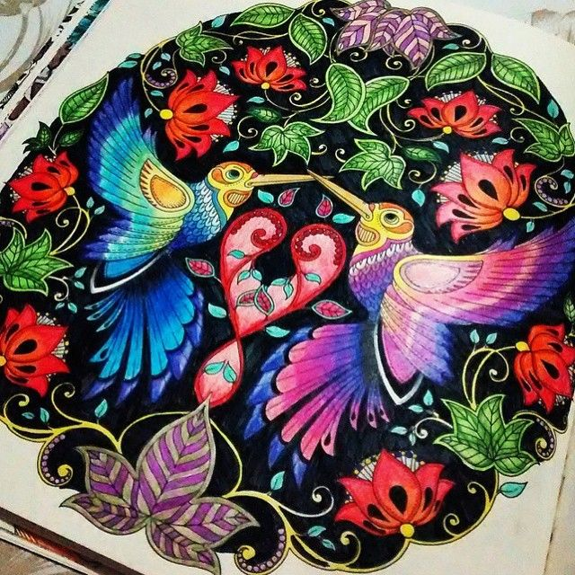 Instagram Post By Jardim Colorido Jardimcolorido Colouring InAdult ColoringColoring BooksHummingbirdsSecret GardensJohanna
