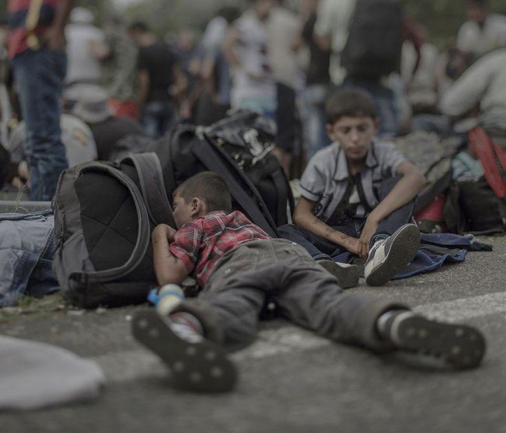 Magnus Wennman photographie les Conditions de Vie des Enfants de Réfugiés syriens (4)