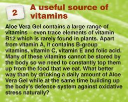 A useful source of vitamins  Aloe Vera Gel contains a large range of vitamins - trace elements of vitamin B12 which is rarely found in plants. Apart from vitamin A, it contains B-group vitamins, vitamin C, vitamin E and folic acid. Many of these vitamins cannot be stored by the body so we need to constantly top them up from the food that we eat.  #vitaminB12  #plants. #vitaminA, #Bgroupvitamins #vitaminC #vitaminE  #folicacid #aloeveragel